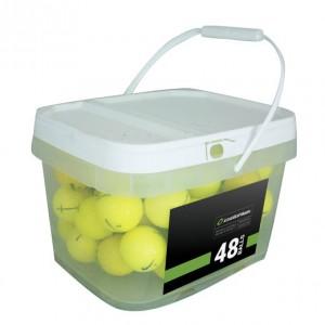48 Premium Yellow Mix Bucket - Mint (5A)